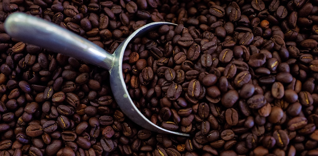Coffee Beans Online >> Little Cove Coffee Co Coffee Roasters Retail Wholesale